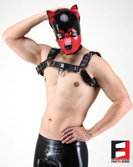 LATEX PUPPY MASK MA-D01