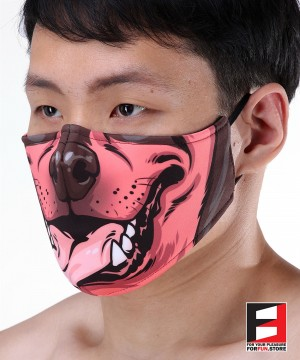 DOBERMAN FACE MASKS D010