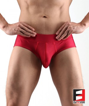 SPANDEX UNDERWEAR RED UWJ