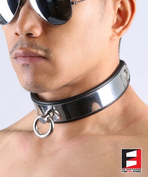 LEATHER WITH STAINLESS STEEL COLLAR CL004A