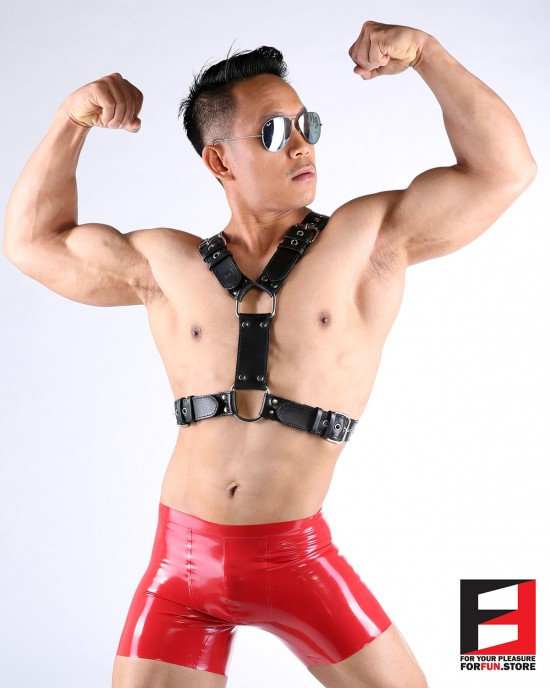 LEATHER Y BASIC HARNESS HS003