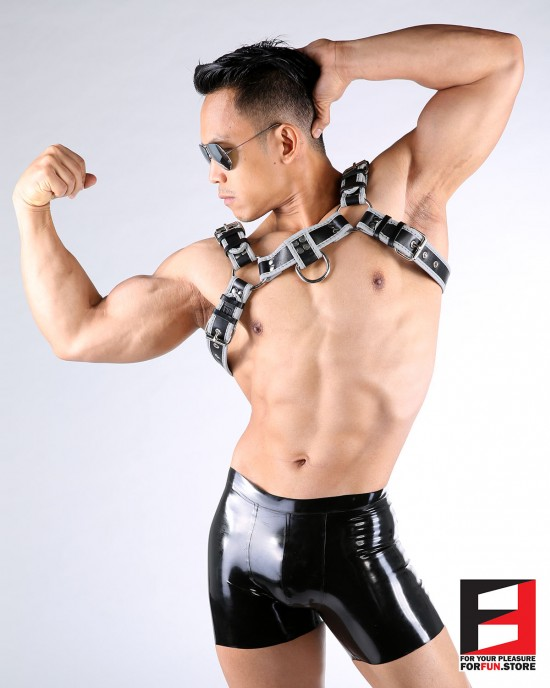 LEATHER BULLDOG REFLECTION HARNESS HS004RE