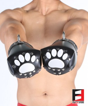 LEATHER PAW MITTS PRO