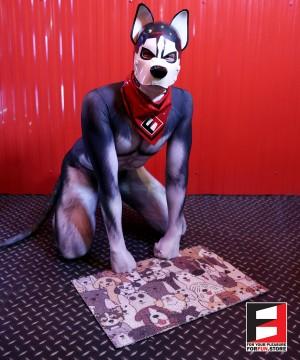 PET MAT PUPPY COLOR MAT001